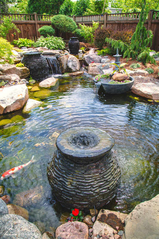 Water garden and water features create an oasis in your yard